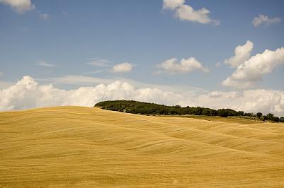 维得斯卡,自然美,天空,水平画幅,谷仓,无人,夏天,自由,田地,植物