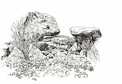 一只动物,布日汉姆岩,约克,地名,水平画幅,岩石,冰河,无人,草,非凡的
