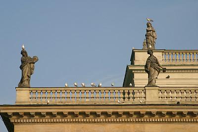 鸟类,屋顶,栏杆,华沙,马佐夫舍,新古典派,水平画幅,建筑,无人,宫殿