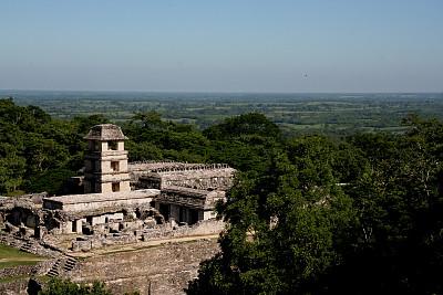帕伦克,宫殿,墨西哥,天文台,古代文明,水平画幅,无人,热带雨林,户外,过去