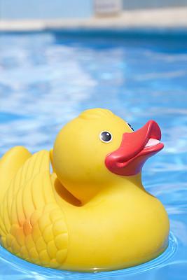 橡皮鸭子,小鸭子,水,可爱的,嬉戏的,鸟类,游泳池,塑胶,西班牙,垂直画幅
