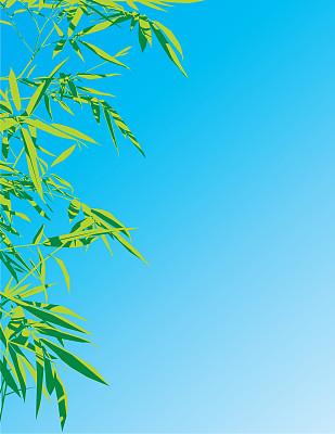 天空,竹,在上面,丰,风水,垂直画幅,留白,无人,绘画插图