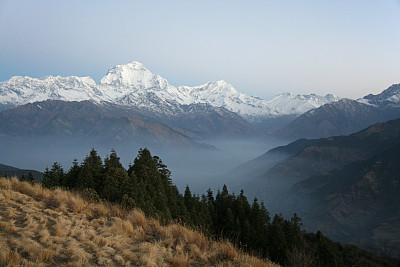 安娜普娜山脉群峰,黄昏,藏族,安纳普纳生态保护区,未来,水平画幅,雪,喜马拉雅山脉,早晨,户外