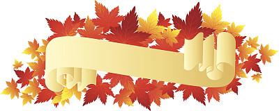 秋天,卷,装饰镜板,华丽的,边框,信函,橙色,巴洛克风格,现代,古典式