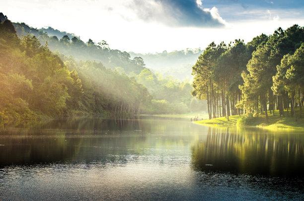湖,松树,水,天空,早晨,旅行者,夏天,松科,光,清新