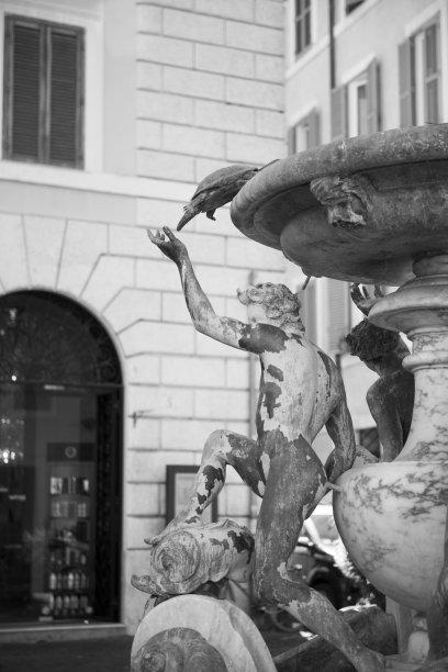 海龜,噴泉,羅馬,意大利,大特寫,垂直畫幅,水,建筑,廣場,羅馬風格