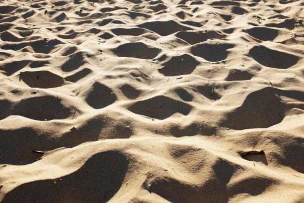 脚印,风,沙丘,留白,水平画幅,纹理效果,沙子,贫瘠的,无人,透视图