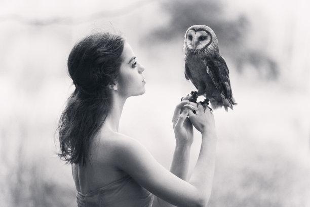 猫头鹰,平衡折角灯,半身像,野外动物,不看镜头,仅成年人,明亮,青年人,女人