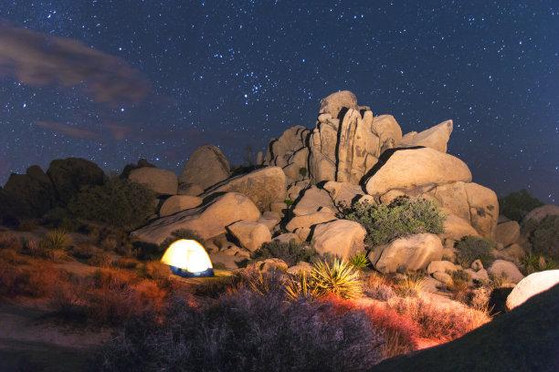 乔舒亚树国家公园,夜晚,莫哈韦沙漠丝兰,约书亚树,天文望远镜,星迹,丝兰,莫哈韦沙漠,星系,星星