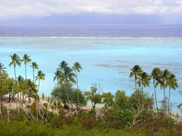 Polynesian Tropical Summer paradise: dramatic Sandy turquoise tropical beach and Green Palm Trees over water, dreamlike Bora Bora island , Tahiti motus – Idyllic French Polynesia