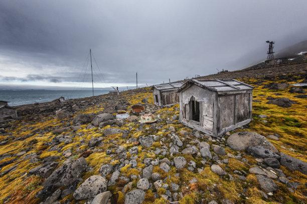 被抛弃的,狗屋,南极洲,留白,水平画幅,动物保护,无人,古老的,苔藓,户外