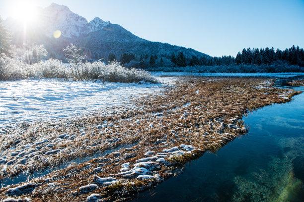冬天,水,留白,林区,雪,白色,风景,童话故事,斯洛文尼亚,河岸