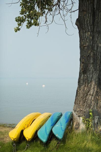 皮船,湖,自然,垂直画幅,水,奥卡纳根山谷,奥卡诺根湖,绿色,无人,鸟类