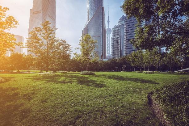 浦东,上海,城市天际线,自然美,天空,水平画幅,夜晚,无人,交通,户外