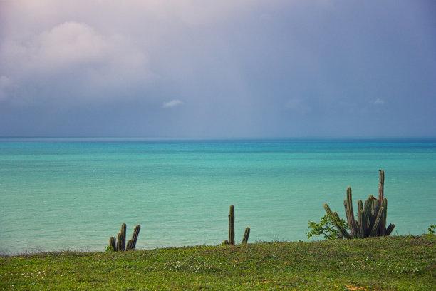 地平线,海洋,水,天空,留白,水平画幅,云,无人,草原,夏天