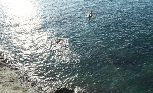 女人,海洋,浮潜,日光,水,休闲活动,高视角,仅成年人,彩色图片,热带气候