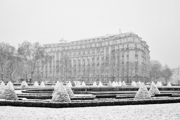 雪,巴黎,在下面,天空,近景,草,白色,冬天,街道,雾