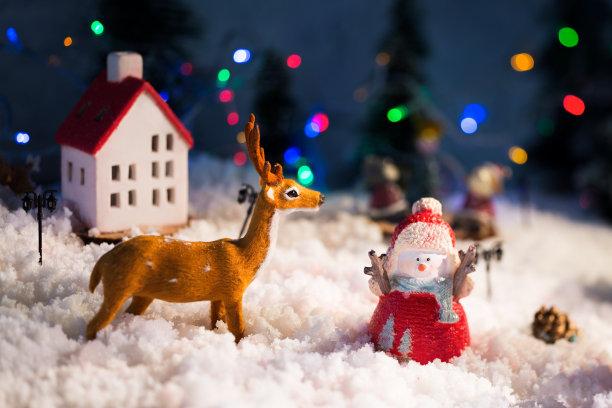 圣诞装饰,美,水平画幅,夜晚,雪,无人,符号,组物体,户外