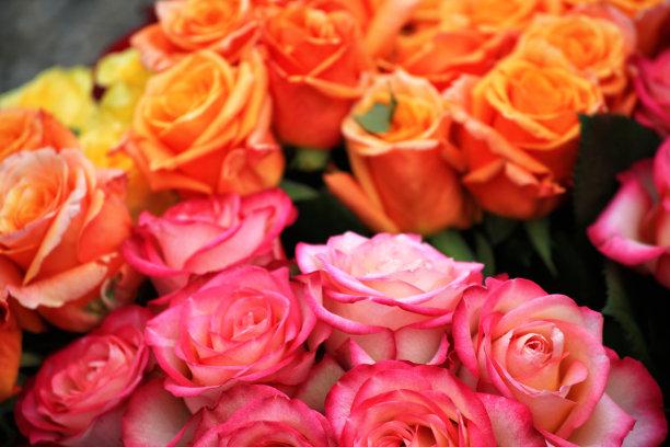 玫瑰,黄色,粉色,美,水平画幅,情人节,夏天,生日,花束,植物