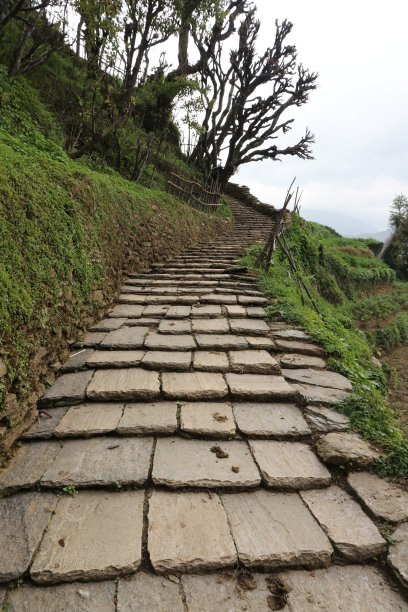 石材,天国的阶梯,垂直画幅,天空,台阶,灵性,枝繁叶茂,云,山,无人