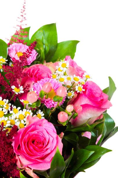 仅一朵花,花束,反差,大量物体,垂直画幅,美,无人,甘菊花,草,单茎玫瑰