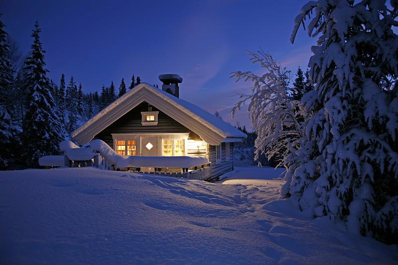 小别墅,水平画幅,小木屋,夜晚,雪,无人,圣诞树,冬至,云杉