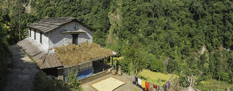 安纳普纳生态保护区,尼泊尔,绿色,山谷,喜马拉雅山脉,偏远的,农舍,传统,安娜普娜环线,茶馆