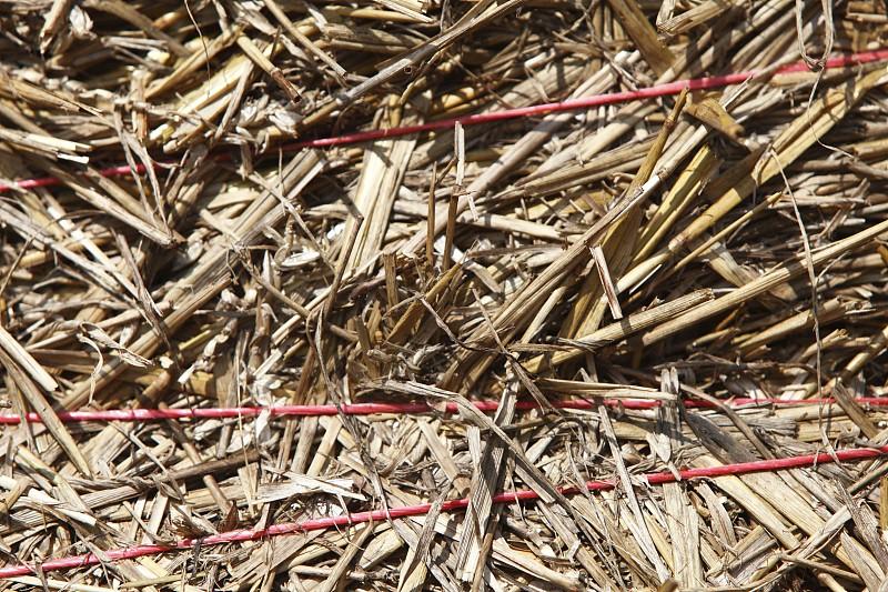 干草卷,特写,纤细的,干草,水平画幅,无人,夏天,干的,线绳,稻草