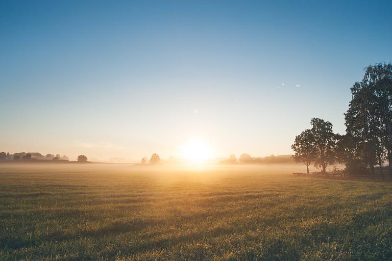 雾,田地,早晨,夏天,自然美,平衡折角灯,在上面,瑞典,东约特兰,田园风光