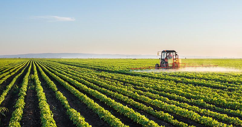 拖拉机,大豆,田地,农业机器,农用喷雾器,农业设备,高粱,单一栽培,农作物,栽培植物