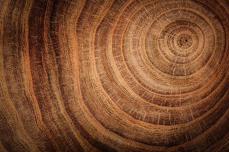 木制,背景,褐色,衣柜,水平画幅,纹理效果,形状,衰老过程,平视角,木材