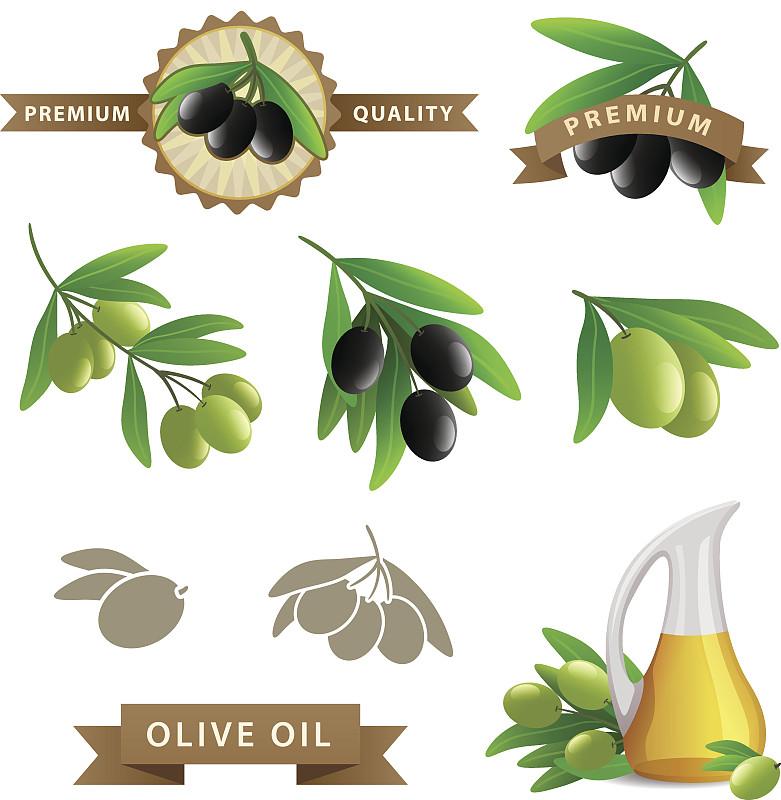 橄榄,矢量,油橄榄树,农业,华丽的,部分,计划书,边框,希腊,橄榄油