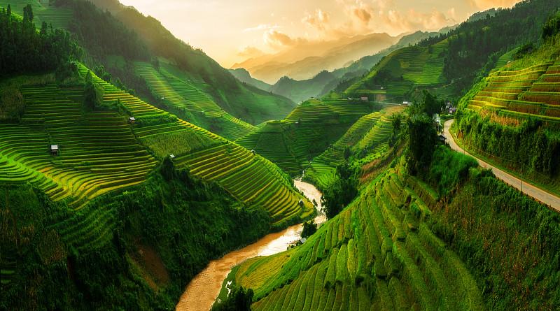 拉茶,田地,越南,稻,梯田,mud,pot,水平画幅,老街省,越南人,水稻梯田