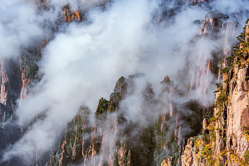 黄山山脉,国家公园,地形,安徽省,松林,山脊,杉树,松科,松树,地平面