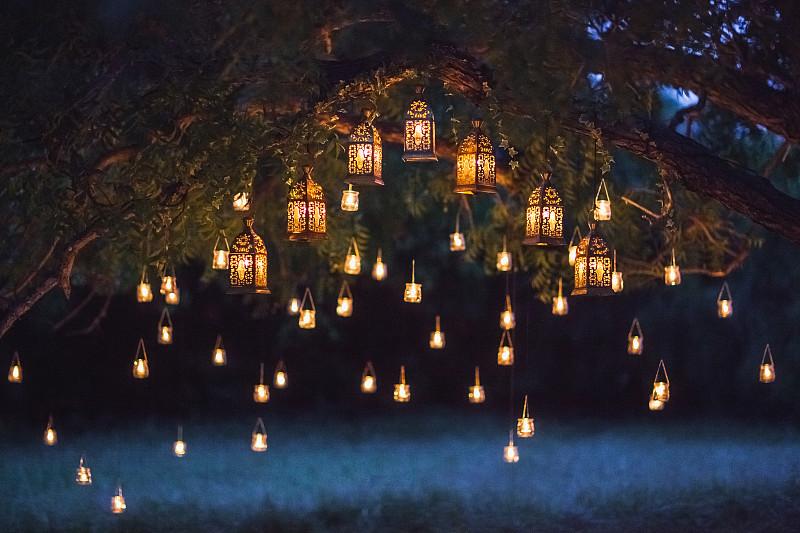 夜晚,结婚庆典,蜡烛,大群动物,红杉,典礼,曙暮光,灯笼,森林,黄昏