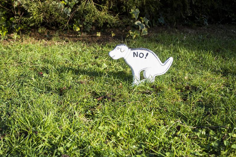 不,臭,机敏,水平画幅,草坪,禁止的,草,田地,英国,布告