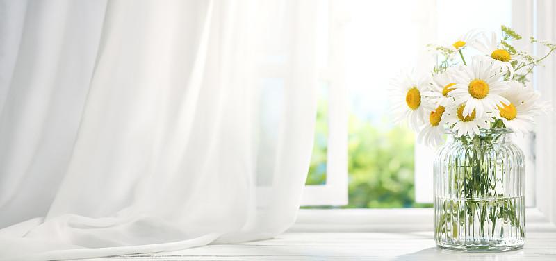 窗户,雏菊,窗帘,早晨,花瓶,花盆,花朵,桌子,光,住宅内部