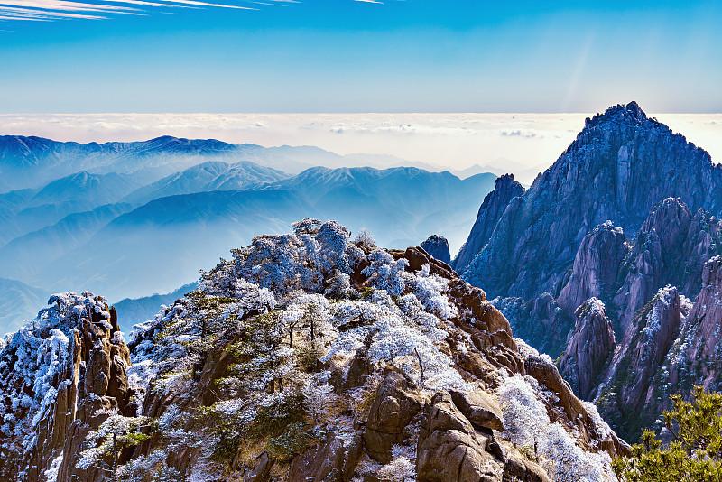 色彩鲜艳,在上面,黄山山脉,松林,安徽省,山脊,杉树,松科,地平面,松树