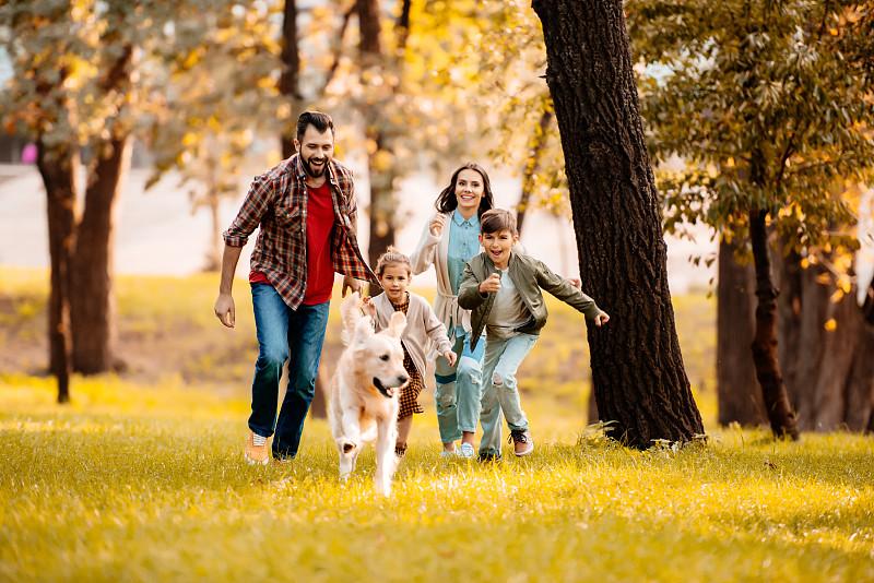狗,家庭,水平画幅,进行中,父母,美人,户外,白人,兄弟姐妹,男性