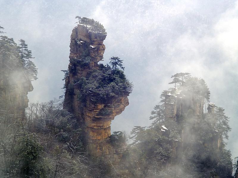 岩石,张家界,自然,松树,水平画幅,地形,山,无人,户外,云景