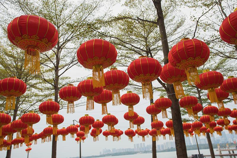 灯笼,春节,红色,公园,广东省,中国元宵节,深圳,中国灯笼,水平画幅,圣诞装饰