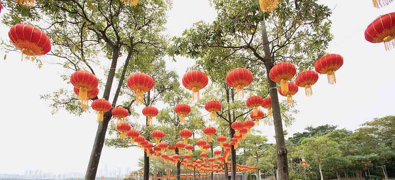 灯笼,公园,春节,红色,广东省,中国元宵节,深圳,中国灯笼,圣诞装饰,全景