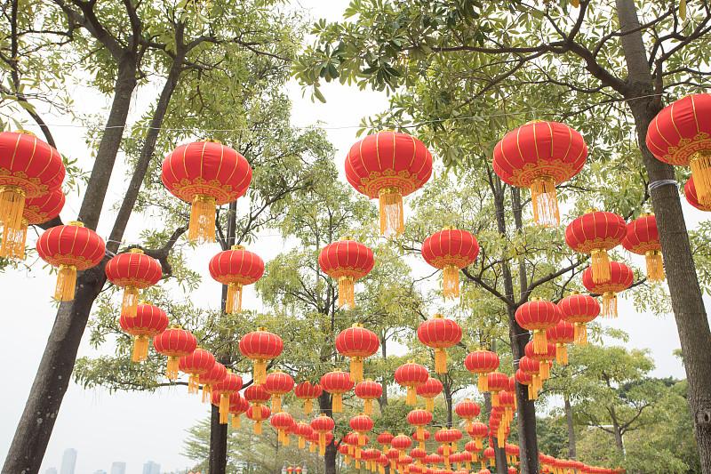 灯笼,公园,春节,红色,广东省,中国元宵节,深圳,中国灯笼,悬挂的,圣诞装饰