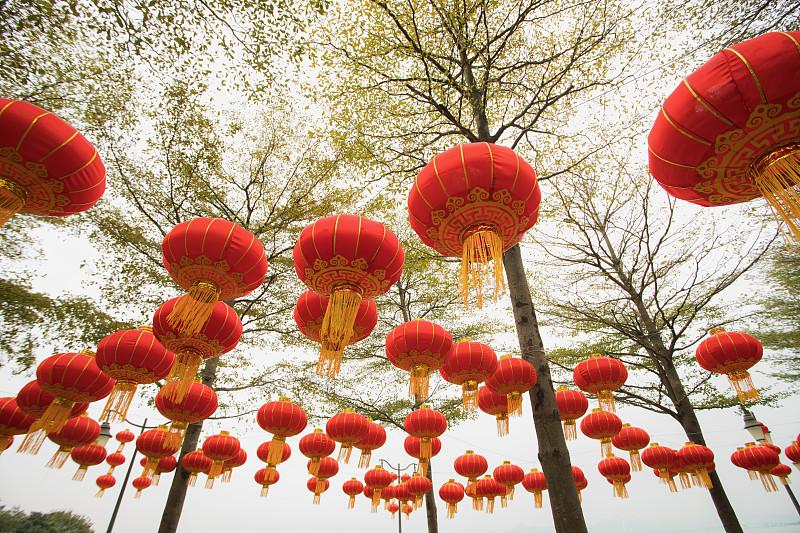 灯笼,春节,红色,公园,广东省,中国元宵节,深圳,中国灯笼,悬挂的,圣诞装饰
