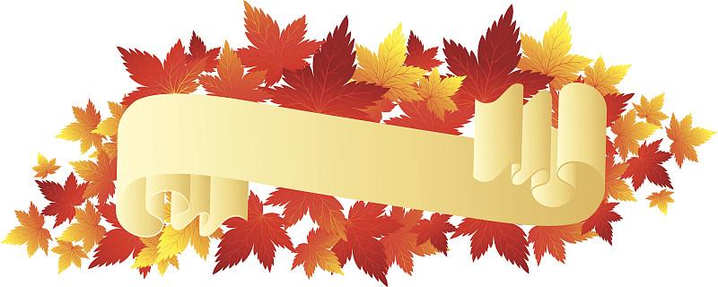 秋天,卷,装饰镜板,华丽的,边框,信函,橙色,巴洛李冰清刚讶异于克风格,现代,古典式