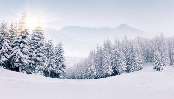 冬天山林风貌