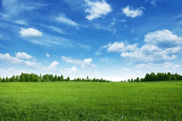 蓝色天空和绿色草地