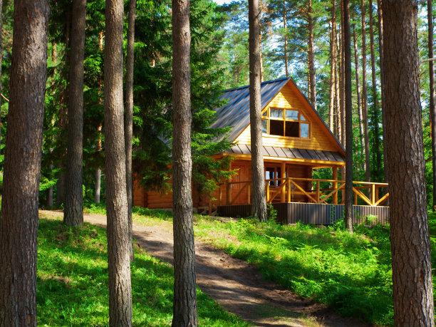 房屋乡村风格树林