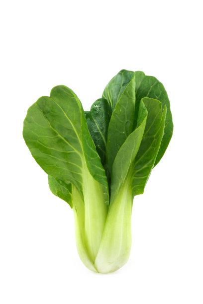 油菜垂直画幅芥菜