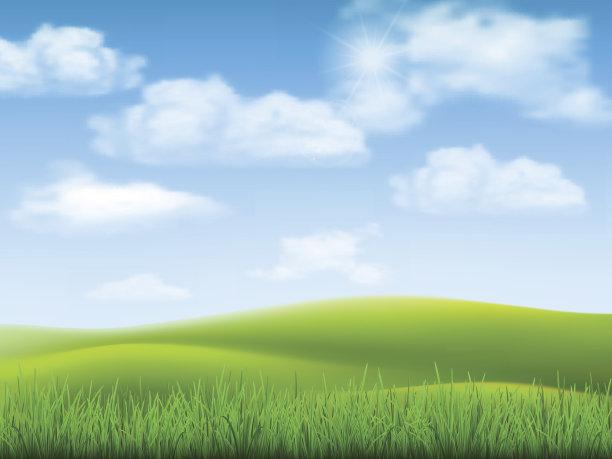 天空草自然
